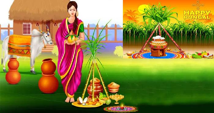 Pongal Festival 2021